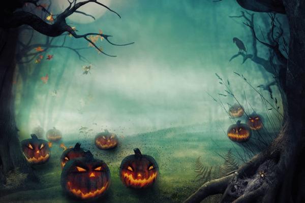 Scary Pumpkins Fabric Back Drop