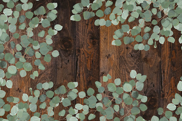 Barnwood with leaves - No wording Fabric Back Drop
