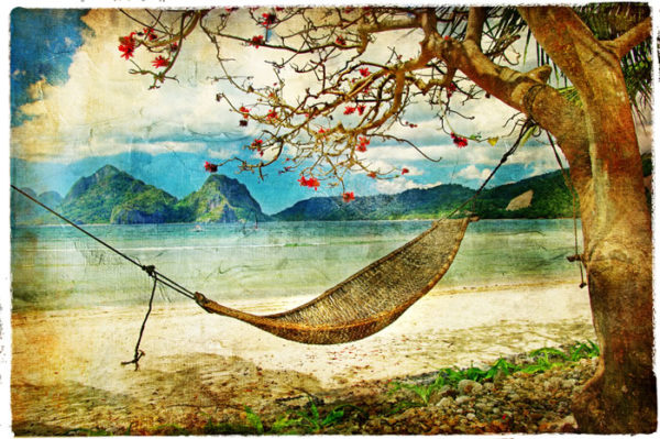 Island Fabric Back Drop