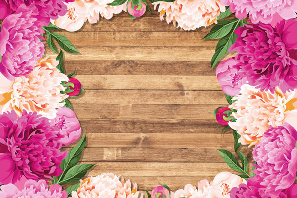 Pink Lush - No wording Fabric Back Drop