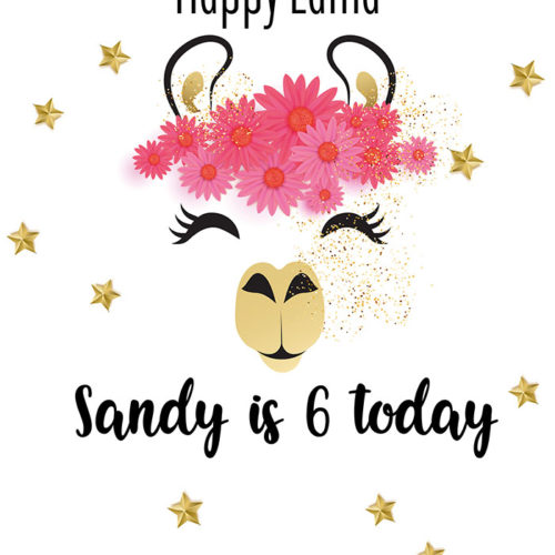 Birthday - Girl - Llama Tear Resistant Back Drop