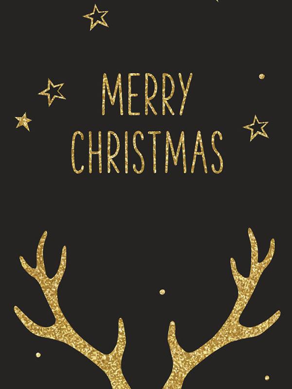 Christmas - Antlers Tear Resistant Back Drop