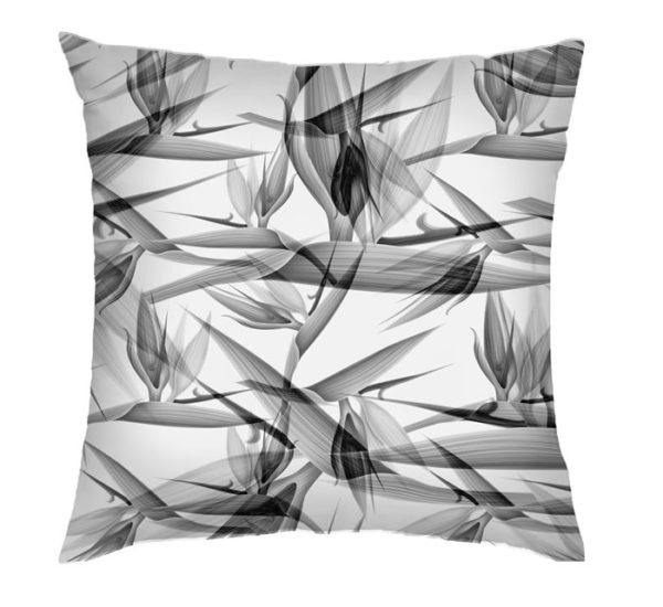 Black Stralitzia Cushion